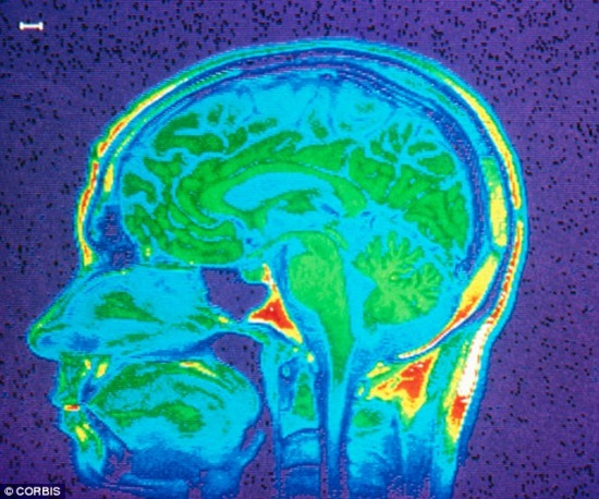 maconha-cerebro